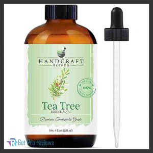Handcraft Blends Tea Tree Essential Oil